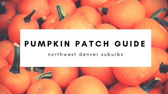 pumpkin patch guide